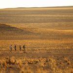 Wandelsafari - Sossusvlei Desert Lodge - &Beyond