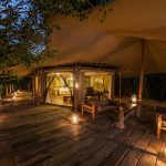 Familie Suite - Mara Plains Camp - Great Plains Conservation