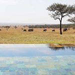 Zwembad met uitzicht - Serengeti House - Singita