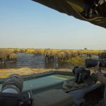 ZarafaCamp-Safari-Experience-GreatPlainsConservation-13