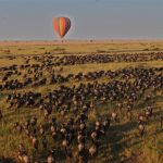 Hot air balloon Wildebeest Migratie - Nyati House - Saruni