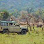 Jeepsafari - Rubondo Island Camp - Asilia Camps & Lodges