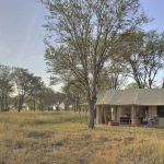 Ligging camp - Kimondo Migration Camp - Asilia Camps & Lodges