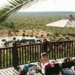 Olifanten - Victoria Falls Safari Lodge
