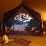 Tent - Jongomero Camp - AndBeyond