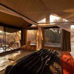 Tent - Kwihala Camp - Asilia Camps & Lodges