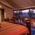 Tent - Offbeat Mara Camp