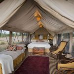 Tent - Serengeti Under Canvas - AndBeyond