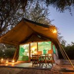 Tent - Tuskers Bush Camp