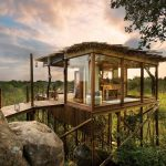 Tree House - Lion Sands Ivory Lodge