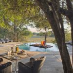 Safari - Phinda Forest Lodge