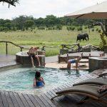 Zwembad met olifanten - Somalisa Acacia Camps - African Bush Camps
